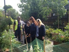 October 02, 2014 - Gardening Project  - Introduction to Horticulture AQA Award Scheme